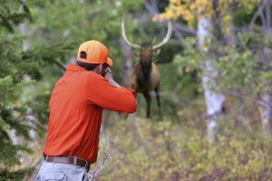 Photo Credit: http://visitcripplecreek.com/businesses/hunting